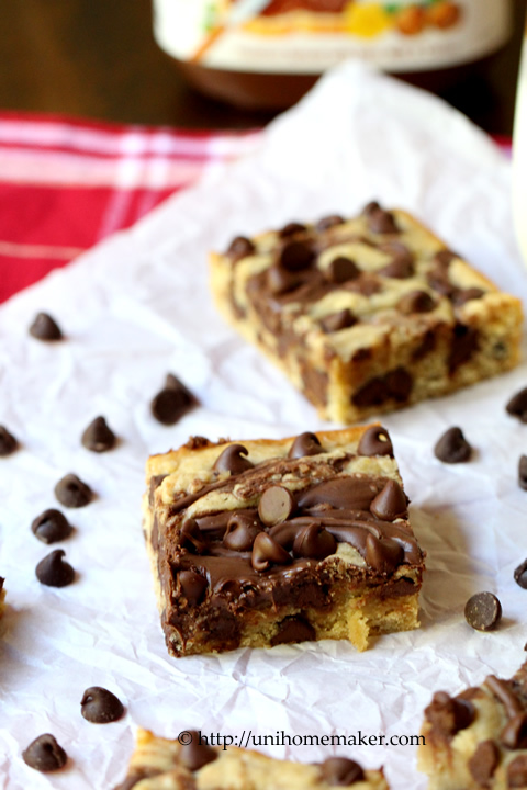 Nutella Swirl Chocolate Chip Blondies